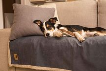 Dog Blankets ♣ ActiveDogToys / Our Big Sky Blanket® is the perfect throw for any couch, chair or car, made with a rugged yet smooth faux suede on one side and a silky soft fabric on the other, these blankets are a dream come true! Keep your home looking stylish and eliminate unwanted pet fur from furniture by using this luxurious new blanket wherever your pet chooses to lay its head. Machine washable and dryable.