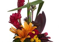 Tropical Flowers / Brighten up someones day with this lovely range of Tropical Arrangements and Bouquets. Bring the tropics to Australia with locally grown and imported flowers displayed by a local professional florist!