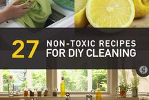 Clean living/non toxic