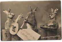 Bunnies, rabbits, HBs