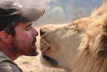 Kevin Richardson Wildlife Sanctuary Volunteer / Volunteer at Kevin Richardson Wildlife Sanctuary in South Africa at the Dinokeng game reserve.
