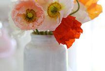 Flores / by Thais Lapp