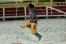 El Charro Events / El charro rodeo shows trick roping