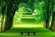 Beautiful Places & Spaces / by Alandria Mustafa