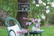 Garden Dreams / Gardening inspiration and tips