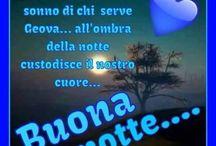 Bufona notte