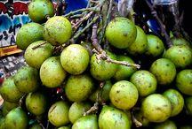 Fruta del mondo