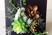 植物類裝飾