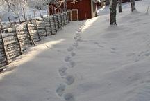 Vinter og snø