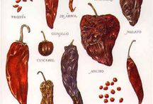 Mexican dried chillies / gorgeous aromatic chillies, uses and preparation
