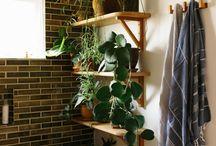 Deco plantes vertes