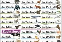 Alemán / idiomas