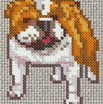 Cross Stitch / by Melissa Stillion