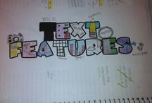 Literacy:  text features