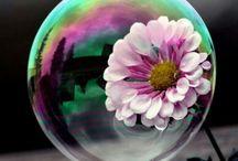 Soap Bubble♡♡♡
