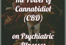 CBD and Neurological Disorders / CBD has been making leaps and bounds for the countless families that have flocked to Colorado for the neurological benefits of CBD. Here's more information.  Learn more at DiscoverCBD.com