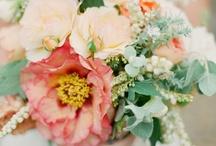 Fleurs/Flowers