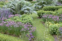EYFS sensory garden