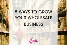 Wholesale Business - Support and Strategies / Strategies and support for the product-based wholesale business owner.
