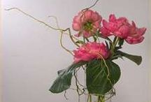 Pink / Primarily bridal bouquets / by cindy limberger