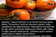 Trabzon hurması
