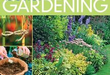 gardening / by Carrie Jacobs-Bonifas
