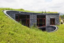Grass Roofs
