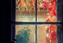 okna - windows