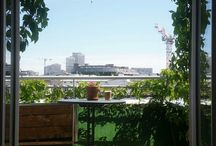 mon jardin / all about my city garden on our terrace and balcony
