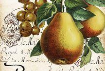 meyve temaları
