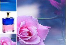 Aura-Soma inspiration / Colour therapy