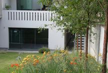 Chiswick Contemporary Garden