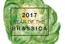 2017 Year of the Brassica / The Brassica family of plants is one of the most prolific genera of vegetables in the world, enjoyed by countless generations in many forms and playing a starring role in many culturally significant recipes. 2017 #YearoftheBrassica