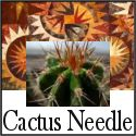 Link to my Blog / Click this image to link to Cactus-Needle quilt blog / by Nedra Sorensen