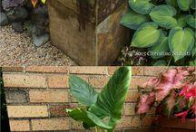 {: Planter Boxes :}