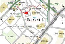 地図 MAP