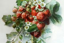 ягоды..фрукты...овощи