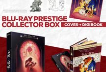 The Disney Collectors Collection / Visual concepts for a collection of collector editions of Disney animated movies on Blu-Ray and Vinyl