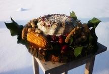 vogelvoeder taart / overheerlijk als het winter is om de vogeltjes naar je tuin te lokken