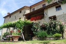 The House / Located on Tuscan/Umbrian borders, in the Renaissance heart of Italy you will find this original historic 18C farmhouse.