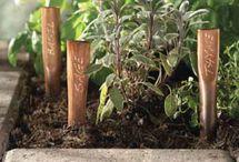 Etiquetas para plantas / Dê um toque pessoal ao seu jardim.