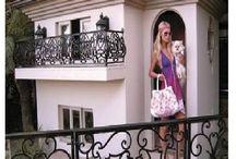 Amazing Dog Houses  / Amazing Dog Houses