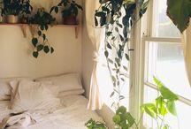 «Home: Master Bedroom»
