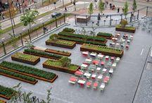Landscape Architecture..