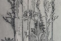 Plant etchings