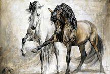 Fine Art  Horses