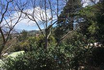 escazu home site for sale