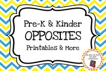 Opposite Theme / Opposite themed activities, ideas and printables for you preschool or kindergarten opposite unit curriculum.
