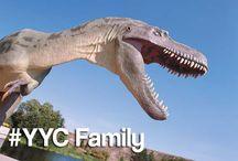 #YYC Family / by Calgary