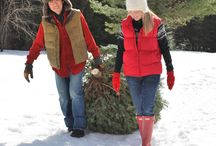 Cut-Your-Own Christmas Trees / Visitors to the farm get to cut their own trees, what a wonderful tradition.